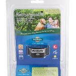 PetSafe In-Ground Fence Receiver Collars for Cats and Dogs Review