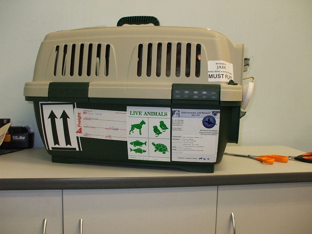 green and tan pet travel crate